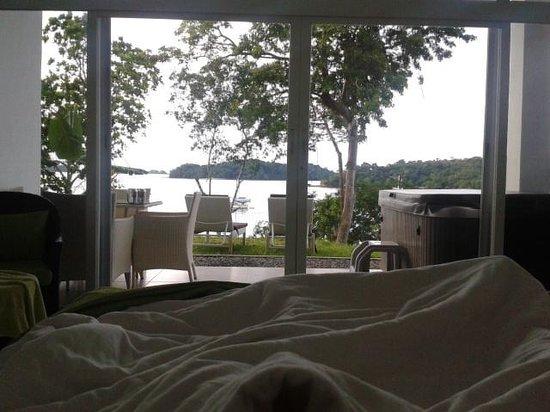 Hotel Bocas del Mar: Desde mi cama con u espectacular amanecer