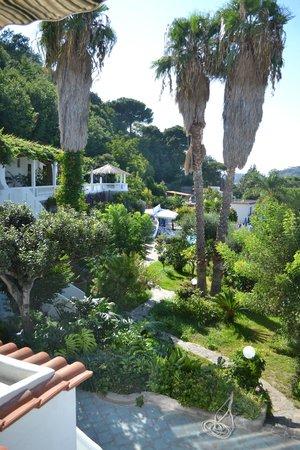 Hotel Parco Conte: Il giardino