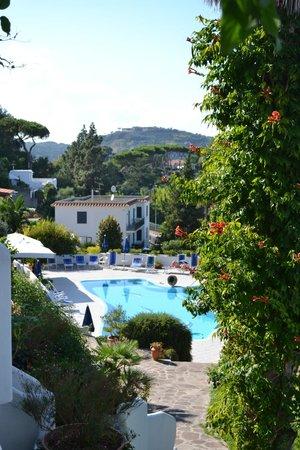 Hotel Parco Conte: La veduta dal salotto