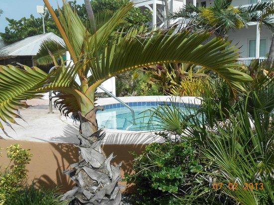 Coconut Beach Resort: Hot Tub