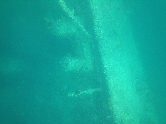 Pelican Adventures: SS Antilla, strong currents..
