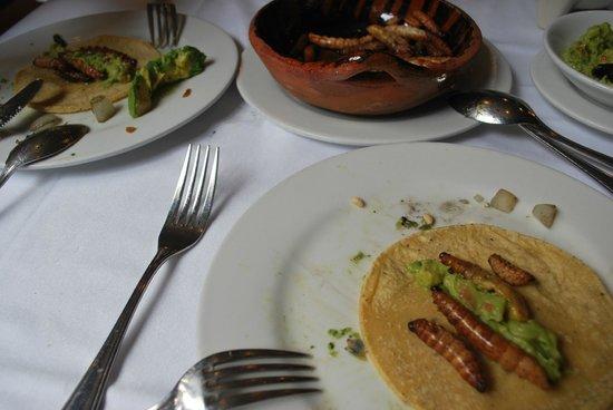 Restaurante El Cardenal : tortillas con gusanos del maguey