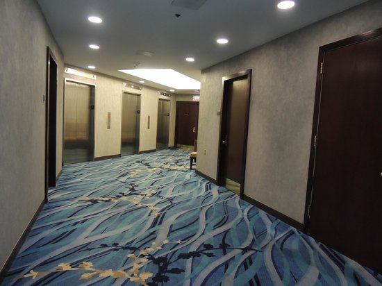 Hyatt Regency Buffalo: Hallway off the Elevator