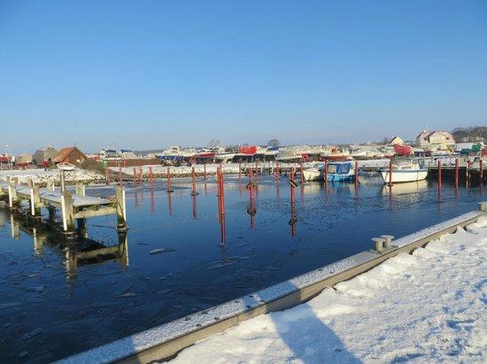 Falsled Kro: En iskold novemberdag, så smuk så smuk. ©Bodil Hammer