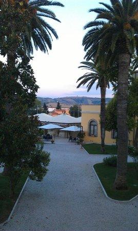 Villa Fiorita Hotel : scorcio tra le palme
