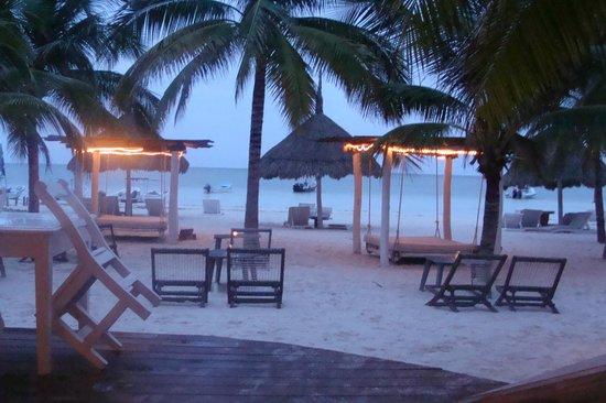 Holbox Hotel Casa las Tortugas - Petit Beach Hotel & Spa : Esta foto está tomada desde el restaurant, y es el área de los camastros y playa