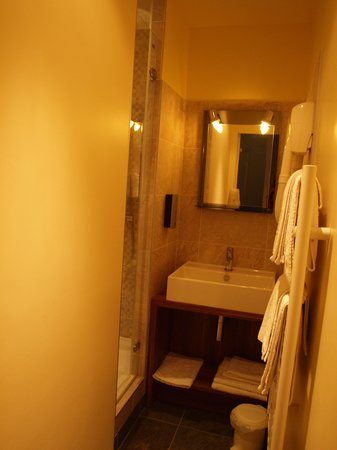Hotel Le Saint Florent : bathroom