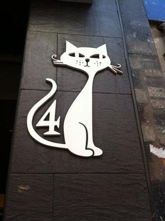 Los 4 gatos