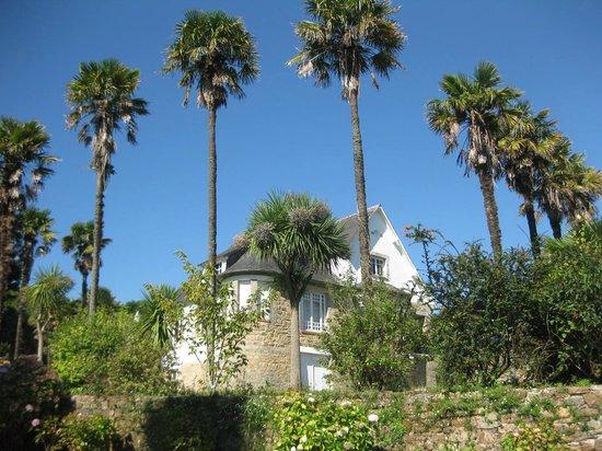 Ancienne Abbaye de Landevennec : The ancient garden of the neighbor