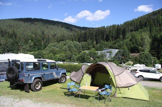 Kleinenzhof: Our campling plot