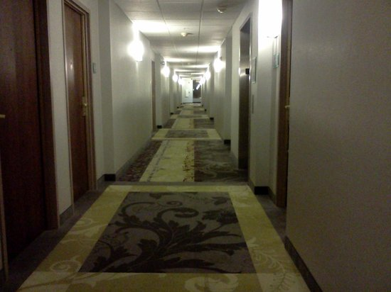 Carpenter Street Hotel: Hallway
