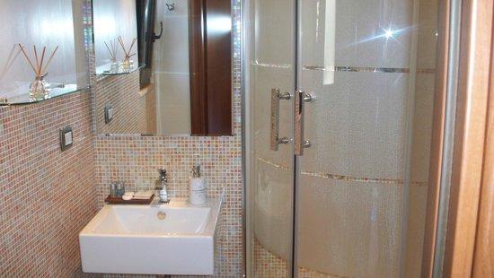 Althea Inn : Bathroom