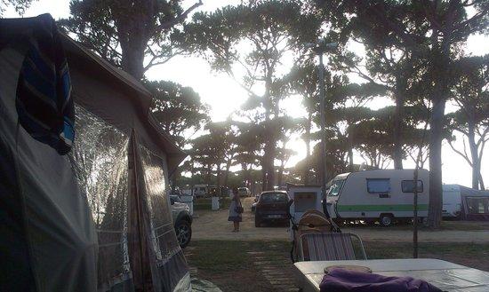 Camping Pinar San Jose: Puesta de sol desde la parcela 150