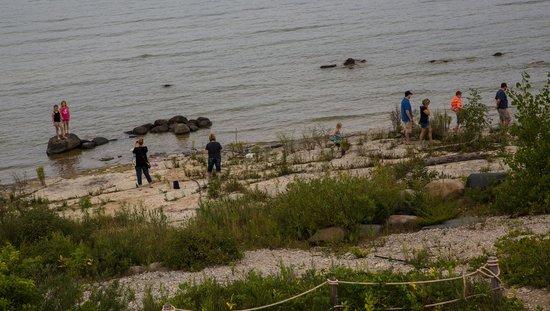 Charity Island Dinner Cruise: Walking the shoreline