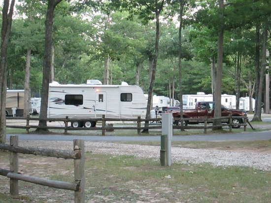 Indian River RV Resort & Campground: Campsite