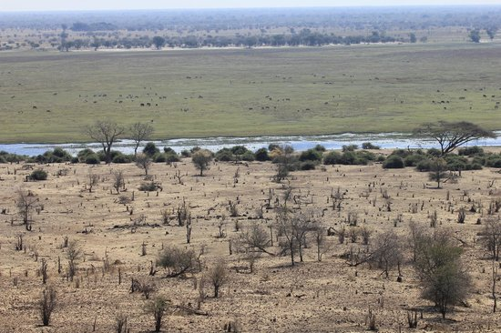 Ngoma Safari Lodge : Chobe River and Namibia on the other side - from our room