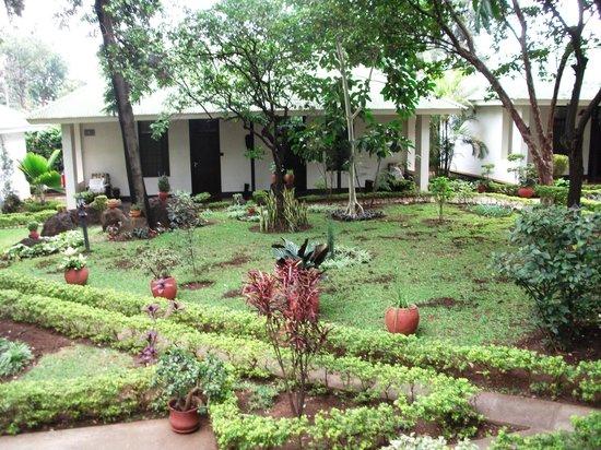 Bristol Cottages Kilimanjaro : jardín