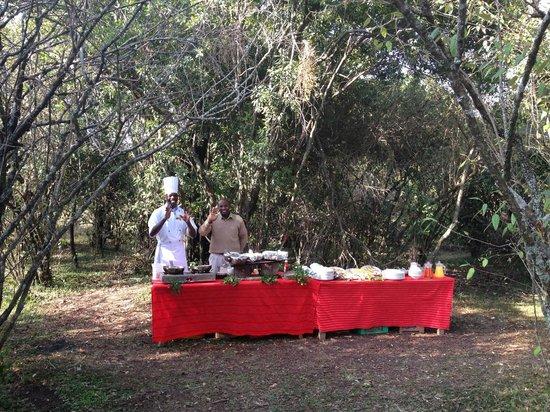 Mara Explorer Camp: Surprise bush breakfast