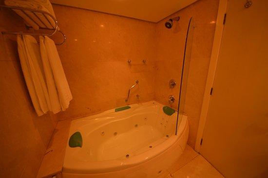 Hotel Estalagem St Hubertus : Banheiro suite cristal