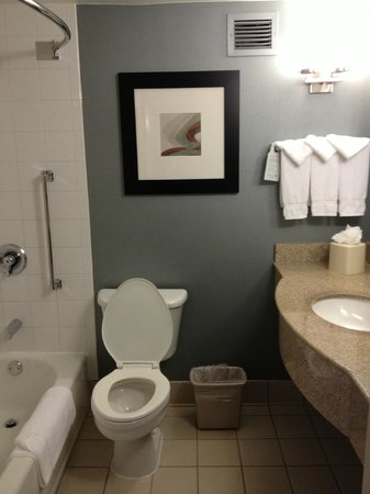 Hilton Garden Inn Austin Northwest / Arboretum : Extremely clean bath area