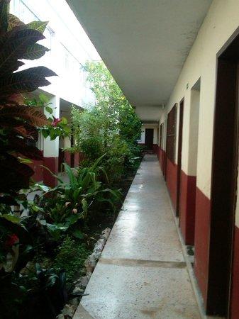 Hotel Posada Edem : Los amigos del Hotel