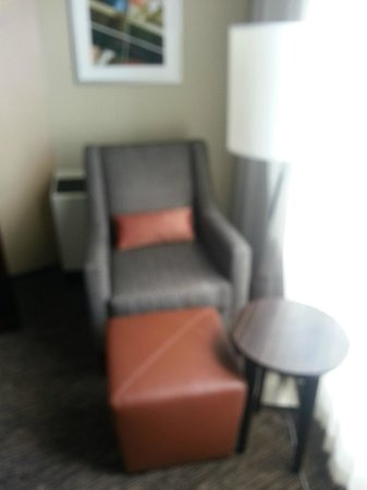 Millennium Hotel Minneapolis: Chair