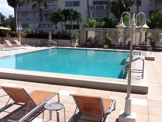 Courtyard Miami Coconut Grove : Piscine