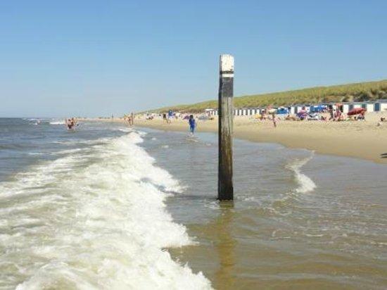 De Zwaluw Hotel-Bar-Appartementen: Strand in De Koog
