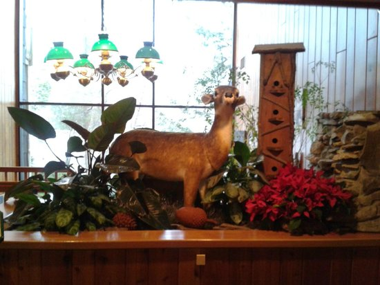 Woodloch Pines Resort: Lobby Area