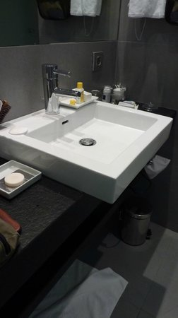Hotel Palacio Guendulain: bagno