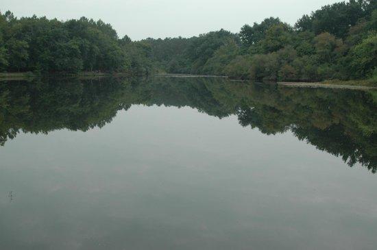 Camping L'étang D'ardy : vue sur l'étang