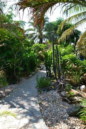 StevieWonderLand: Jardín