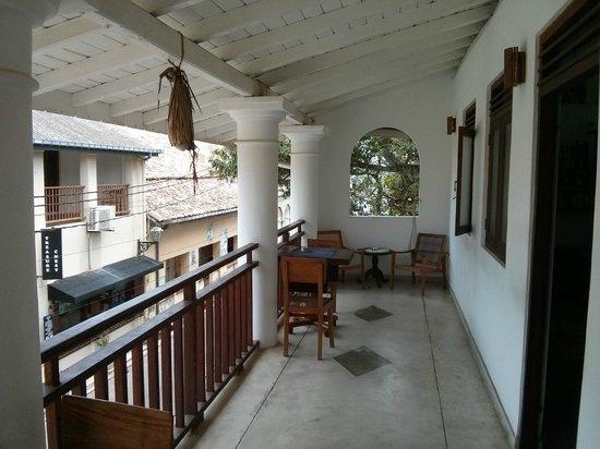 Pedlar62 Guest House: Terraza del edificio (1a planta)