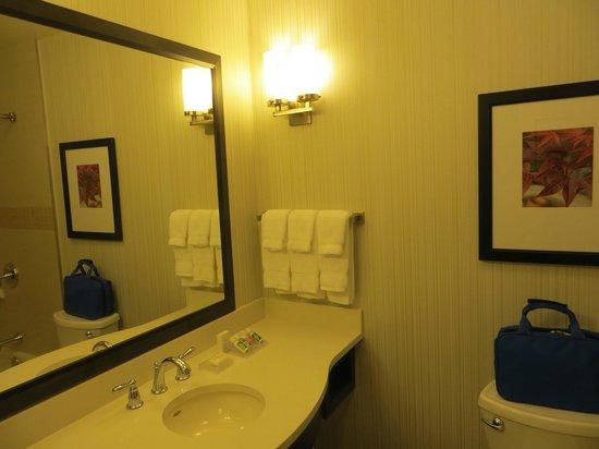 Hilton Garden Inn Auburn: Bathroom.