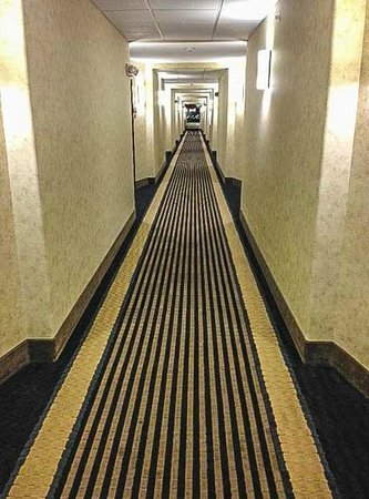 Comfort Suites: Well lit hallways!