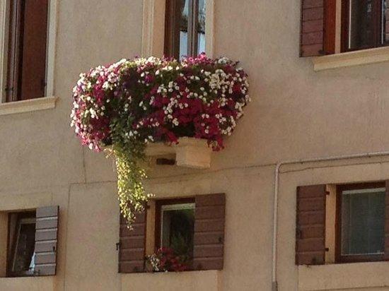 B&B Santo Stefano : un balcone cosi , lo voleva anche Giulietta !
