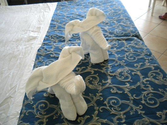 Hotel Clipper: simpatici elefantini
