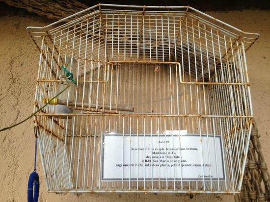 Bed & Breakfast San Marco: camera gratis per due uccellini al b&b, esterno suite passerotto