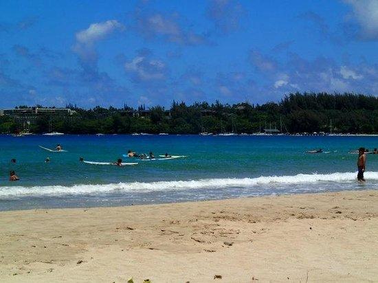Hanalei Beach: Learning surfers