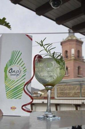 Oasis Backpackers' Hostel Malaga : Gin tonic premiun Rives