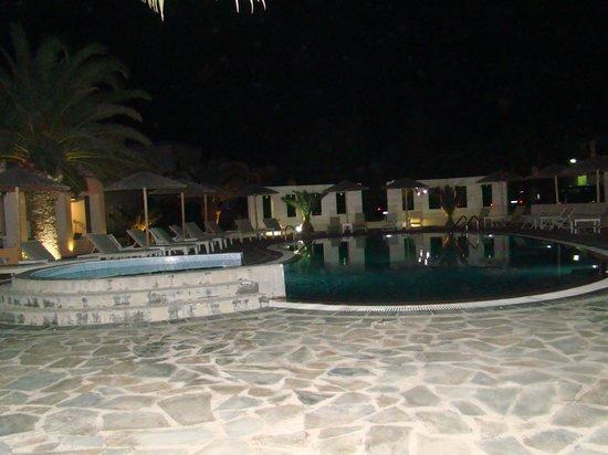Hotel Benois: Πισίνα