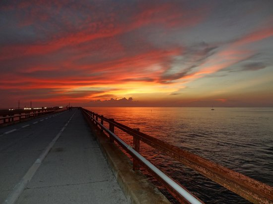 Maraton, FL: Even after the sun goes down, the sky sings!