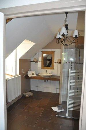 La Magnanerie : The en-suite shower room in the Nymphe room
