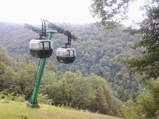 Hawks Nest State Park Lodge : Hawks Nest Tram