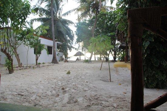 Makuti Beach Hotel : Makuti