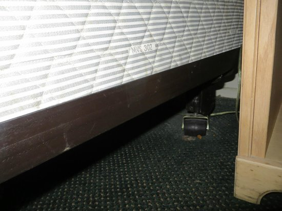 Econo Lodge Barstow: Dust and dirt under the bed