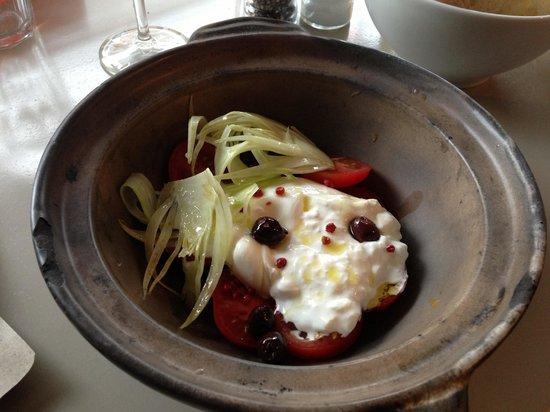Sugar Hill: Burrata, tomato, fennel and black olive starter