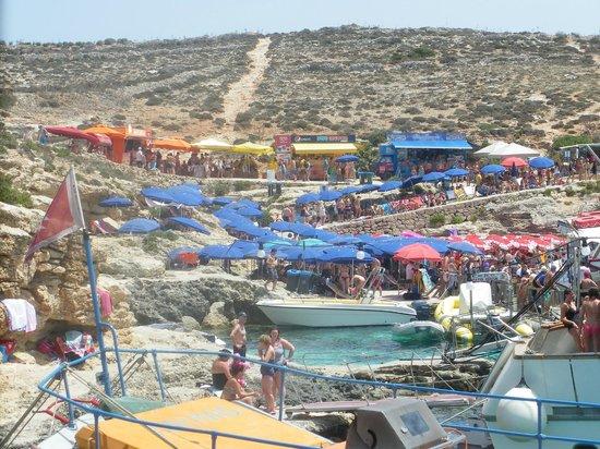 Laguna blu foto di blue lagoon comino tripadvisor - Malta a novembre bagno ...