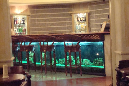 the bar with aquarium picture of orient taj agra tripadvisor. Black Bedroom Furniture Sets. Home Design Ideas