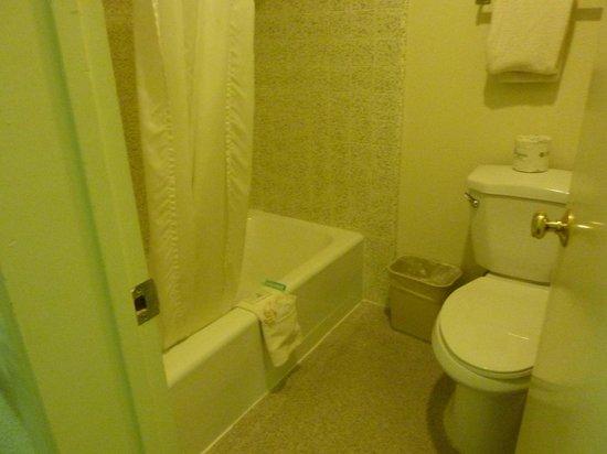 Vagabond Inn San Luis Obispo: Baño